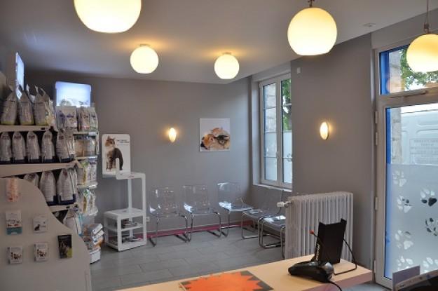 services clinique v t rinaire du barlet 59500 douai. Black Bedroom Furniture Sets. Home Design Ideas